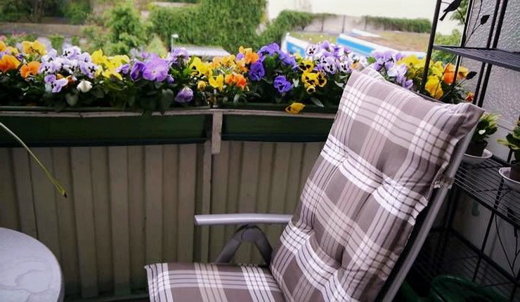 cvetnik-na-balkone