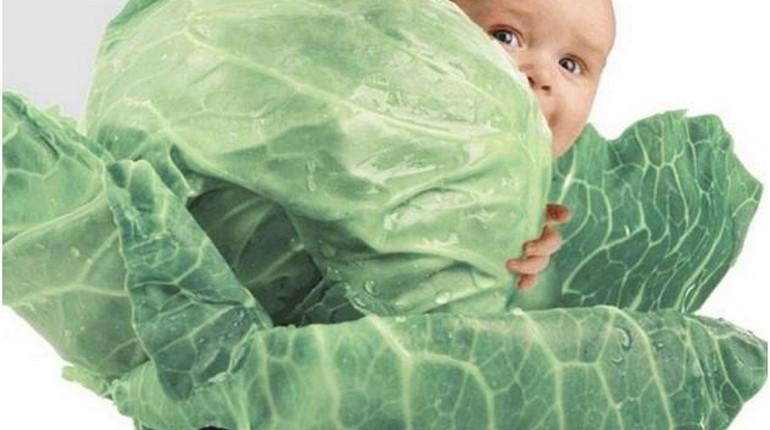 Ребёнок в капусте, ЭКО и беременность