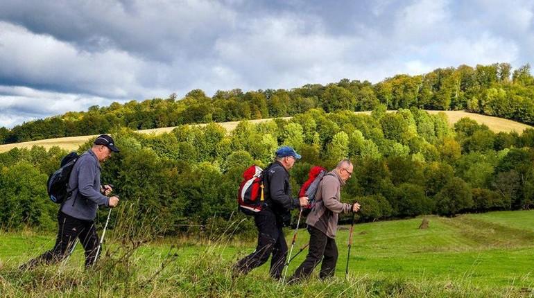 люди занимаются скандинавской ходьбой,пеший туризм, прогулки на свежем воздухе
