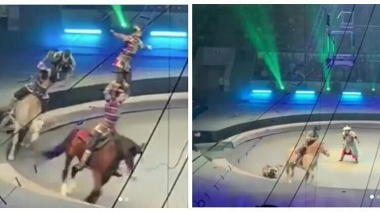 наездник на арене, цирк, выступление на арене цирка