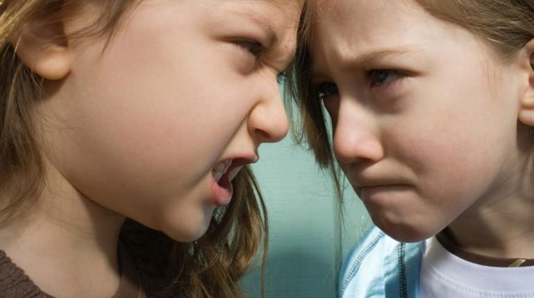 две девочки стоят лицом друг к другу, дети злятся