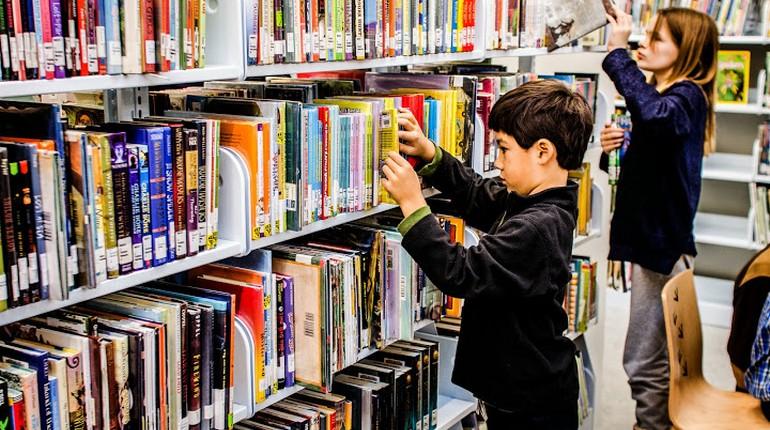 мальчик в библиотеке ,ребенок выбирает книгу