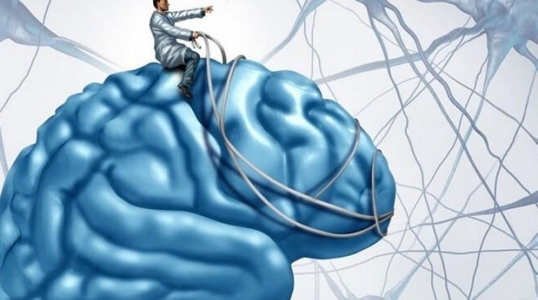 человек оседлал свой мозг и управляет им