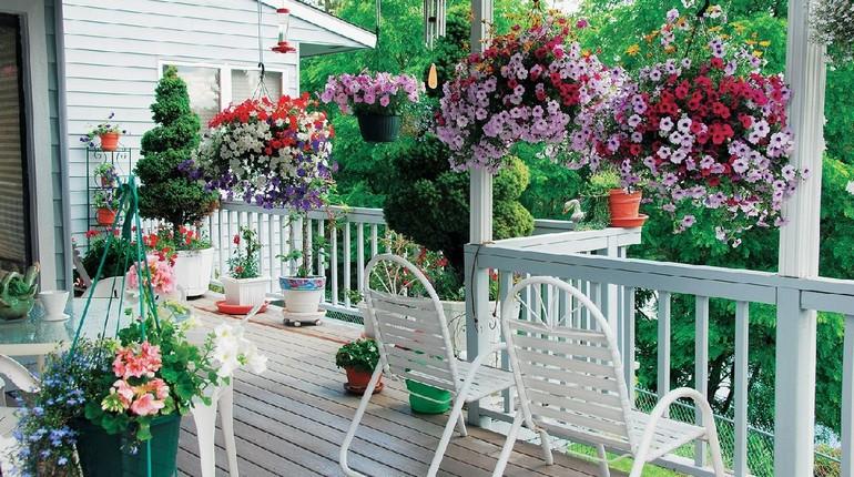 терраса с цветами