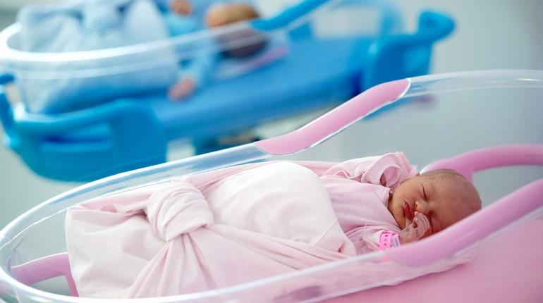 младенцы в розовом и голубом лежат в люлька в роддоме