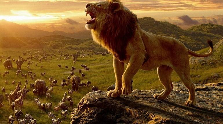 лев стоит на горе и внизу другие звери