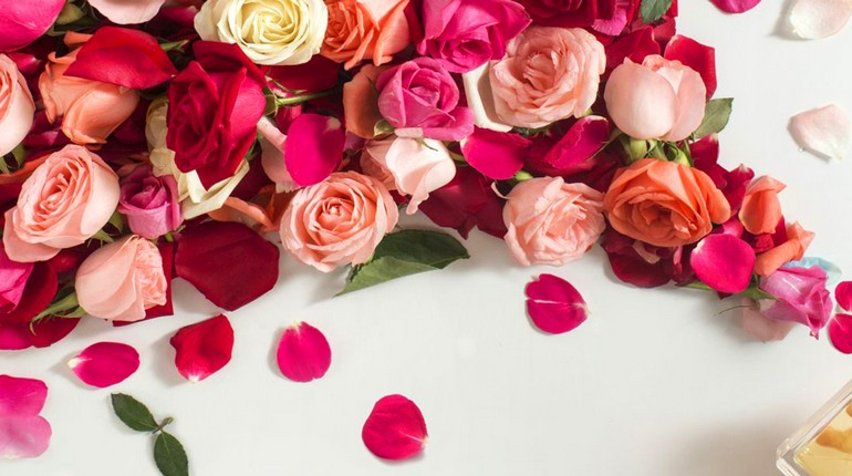лепестки розы широко используются в косметологии