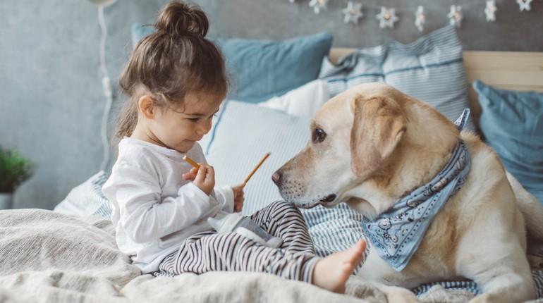 девочка сидит в постели с собакой, ребенок не спит ночью, малышка и собака