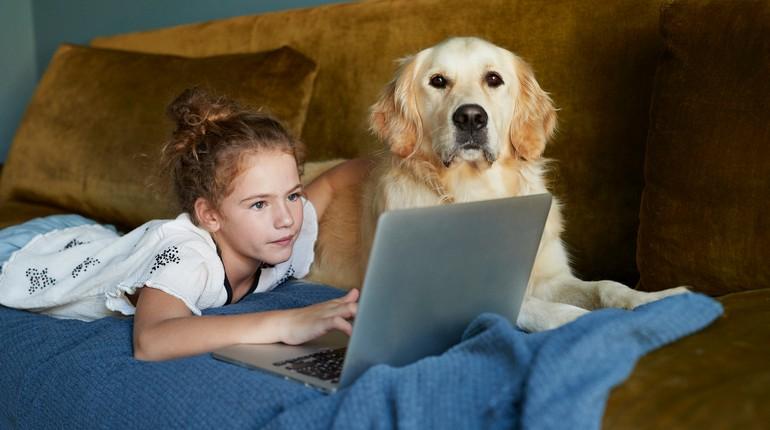 девочка и собака, девочка с ноутбуком и собакой, интересное кино