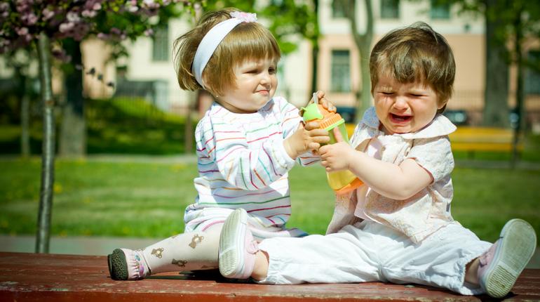 жадность у детей, детские конфликты, детские ссоры