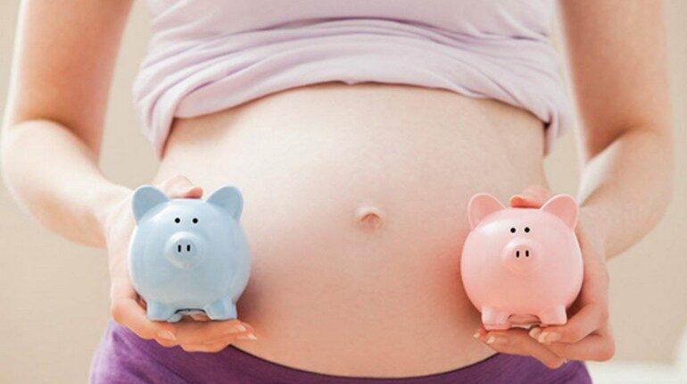 какой пол будущего ребенка, беременная девушка держит розовую и голубую свинку
