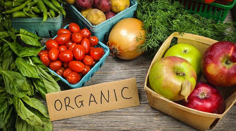 органические продукты, фрукты и овощи в коробочках, урожай овощей и фруктов, органические продукты