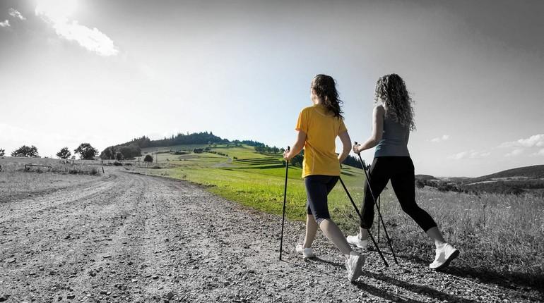 девушки занимаются скандинавской ходьбой, занятие спортом, ходьба с палками