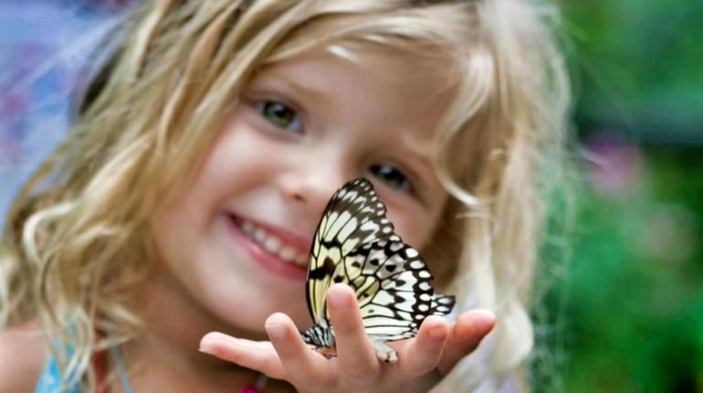 девочка держит бабочку на ладошке, дети любят играть с насекомыми